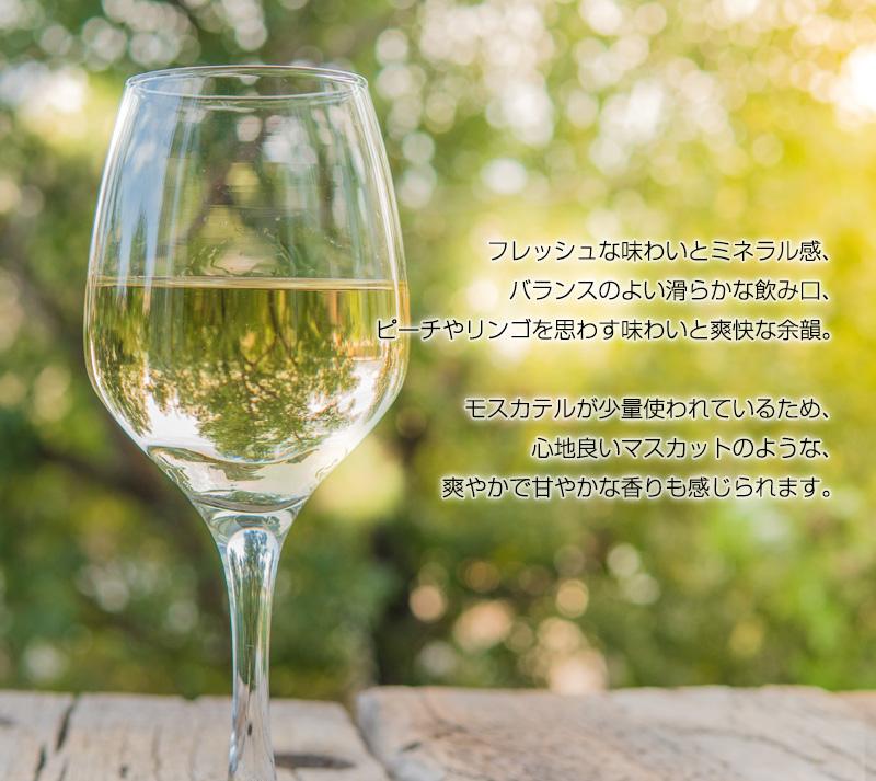 CARMビスパード・ブランコ[2019] 750ml 辛口 白ワイン ミディアムボディ ドウロ地方 世界遺産 直輸入 ポルトガルワイン 【6sou】