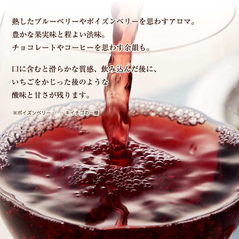 ≪箱ワイン≫ラブラドール・ティント[2018]【赤】【リスボア】3000ml