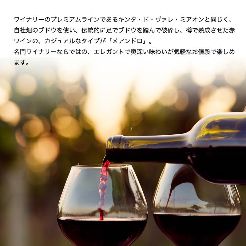 メアンドロ[2016]【赤】750ml 【6sou】
