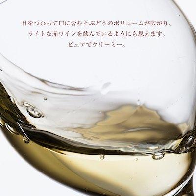 ゼブロ・ビオワイン・ブラン・ド・ノワール[2019] 750ml 白ワイン 辛口 オーガニック アレンテージョ地方 直輸入 ポルトガルワイン 【6sou】
