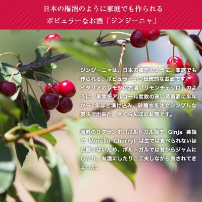 ジンジーニャ・ポケットサイズ(リスボア)100ml【6sou】