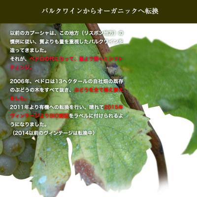 フォッシル・ビオワイン[2015]【赤】750ml【6sou】