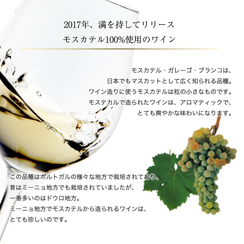 コトヴィーア・モスカテル[2019] 750ml 白ワイン 辛口 ミーニョ地方 受賞ワイン 直輸入 ポルトガルワイン 【6sou】