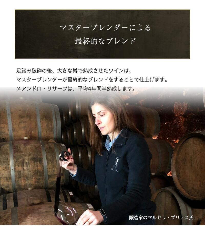 メアンドロ・リザーブ・ポートワイン 750ml 甘口 食前酒 食後酒ドウロ地方 受賞ワイン ギフトに最適 直輸入 ポルトガルワイン【6sou】