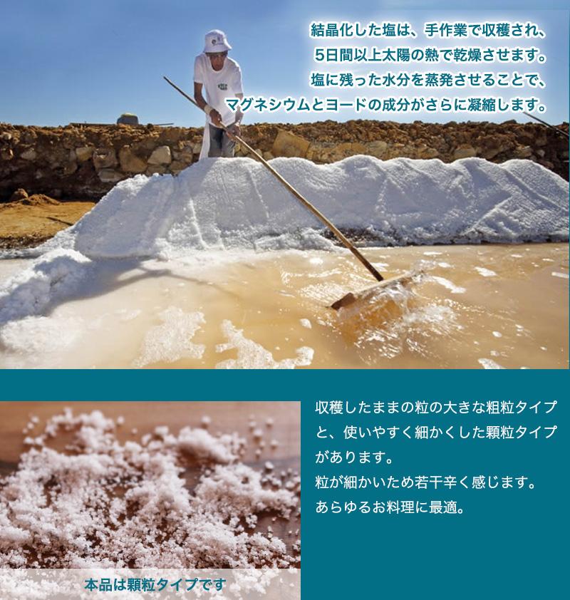 トラディショナル・シーソルト顆粒(600g)