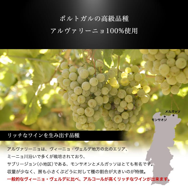 カーザ・ド・カピタン・モール・アルヴァリーニョ[2019] 750ml 白ワイン 辛口 ヴィーニョ・ヴェルデ地方 受賞ワイン 直輸入 ポルトガルワイン 【6sou】