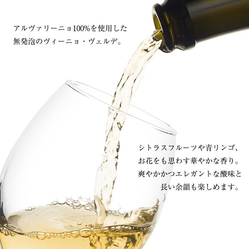 QMアルヴァリーニョ[2020] 750ml 白ワイン 辛口 ヴィーニョ・ヴェルデ地方 受賞ワイン 直輸入 ポルトガルワイン 【6sou】