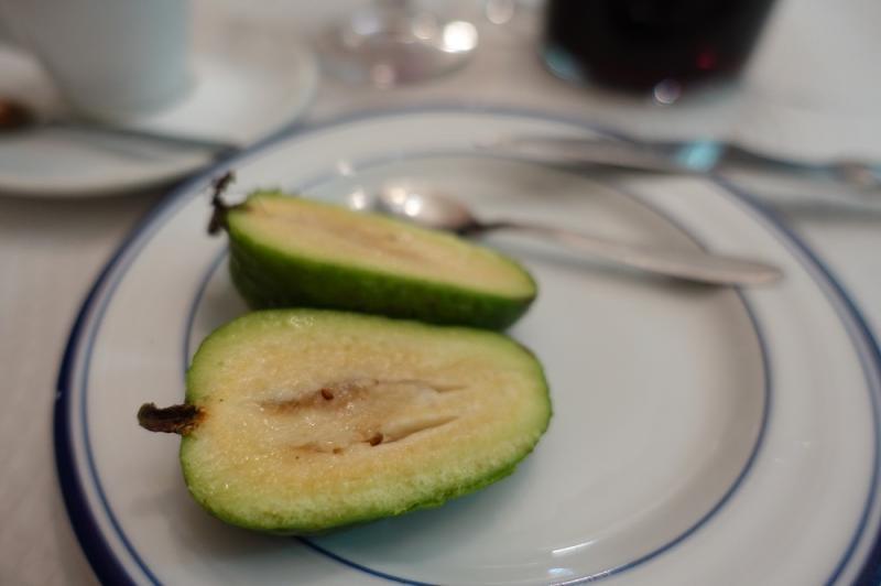 始めて食べた、おじさんにもらった南国の果物