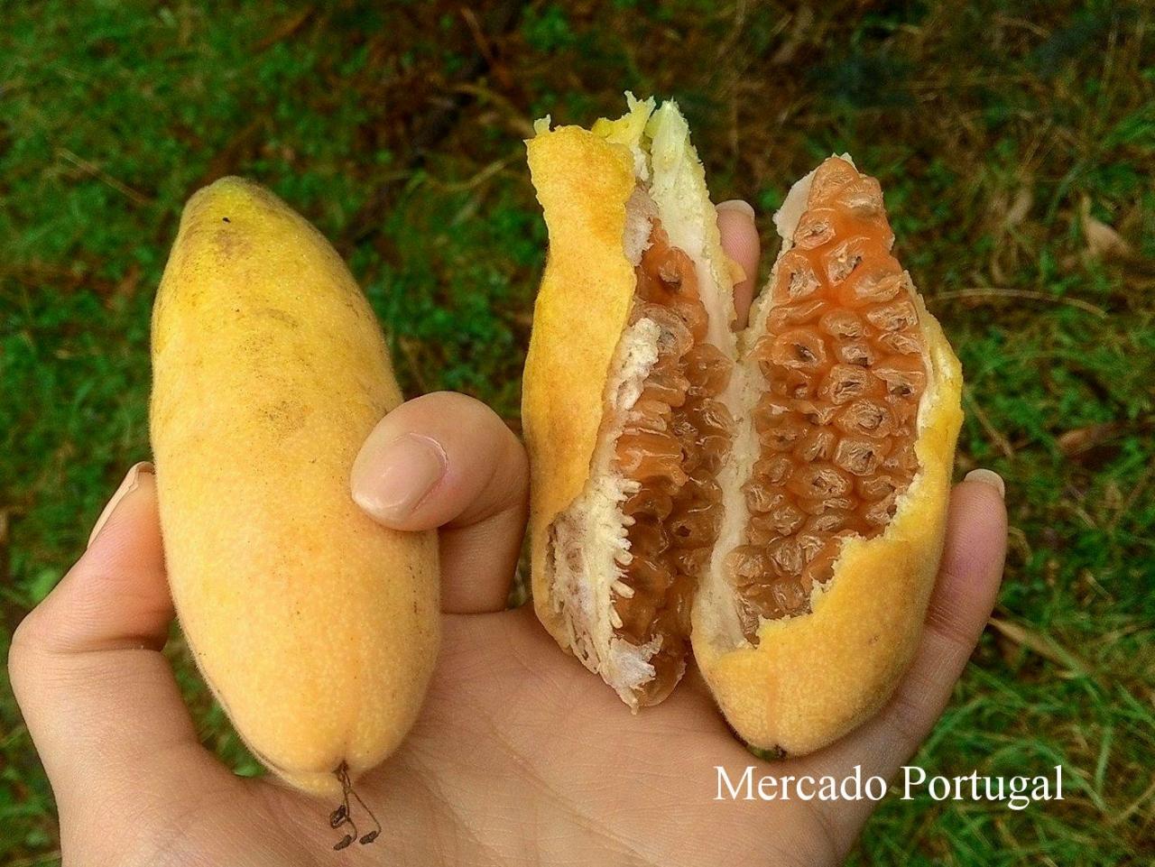 こちらは、バナナパッションフルーツと呼ばれる果物