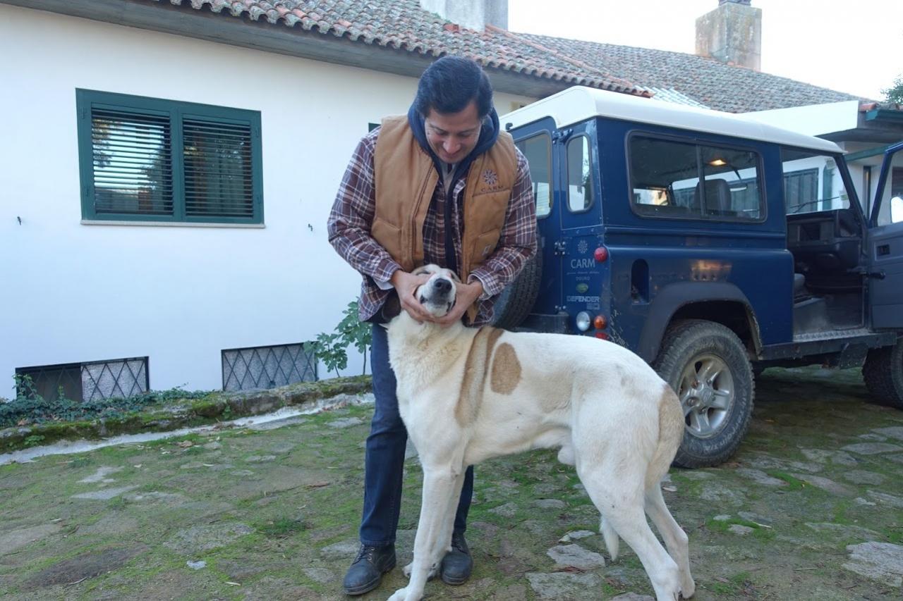 フィリッペの犬・アトシュ