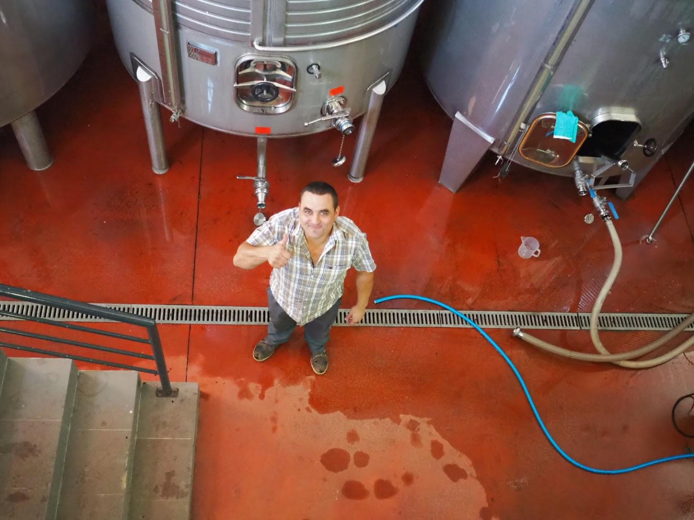 ブドウ畑の管理からワイン造りまでこなすルイーシュ