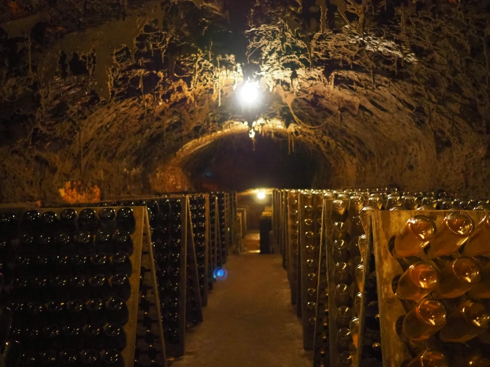 バイラーダ地方の伝統シャンパーニュ製法のワインの作り手さんにも会いに行きました。